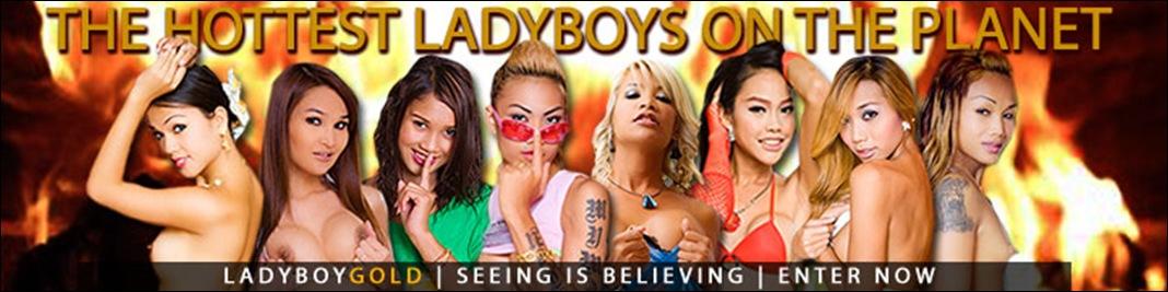 ladyboygold_banner